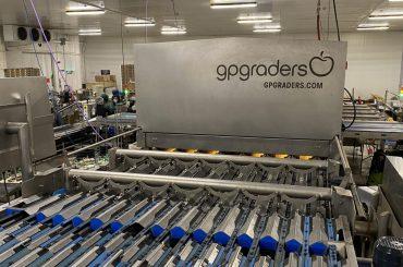 gpgraders-alfaberries-calidad-en-berries