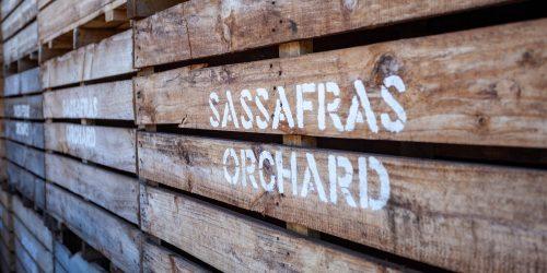 gpgraders-cust-sassafras-feat