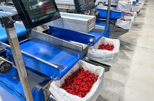 Valley Fresh Cherries & Stone Fruits