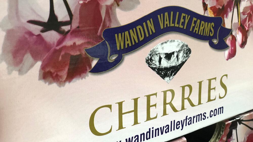 gpgraders-wandin-valley-image-9
