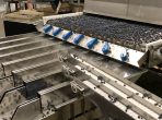 gpgraders-Perfect Blueberry Sorting